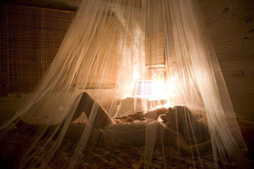 Sposób na owady, czyli moskitiery na straży pomieszczeń